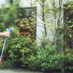 もし庭があれば…あなたならどんな風にアレンジしますか?